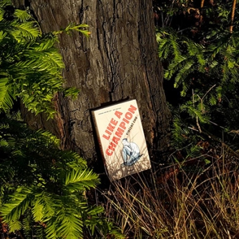 photo of Vincent Chu's short story collection against a tree