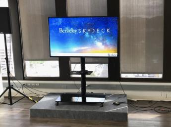 A large monitor with the Berkeley Skydesk logo projected on it.