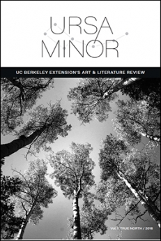 Ursa Minor, Extension's literary journal 2016