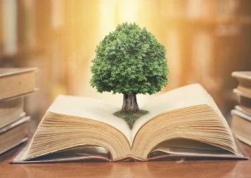 Small tree growing in the center of an opened book on a desk in a library