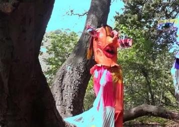 Screenshot from Eden Knutilla Treelogy film