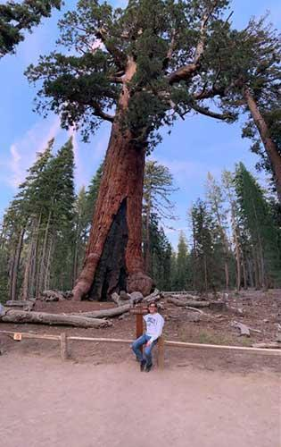 Frederic Bock stands in front of a redwood tree